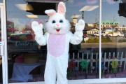 Bunny-at-Chamber
